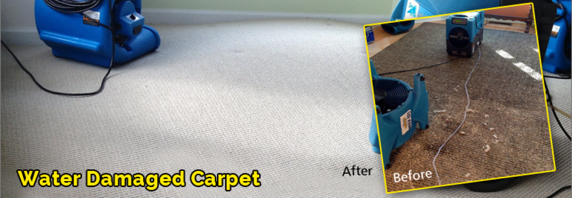 Water-Damage-Carpet-Malibu