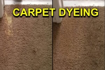 Carpet Dyeing & Color Correction Specialists